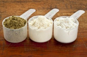 Which Protein Supplements Should You Take?