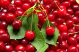 Relieve Muscle Pain with Tart Cherries