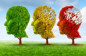 Reverse Dementia & Alzheimer's with the MIND Protocol