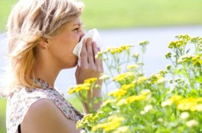 A Natural Remedy for Your Seasonal Allergies