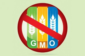 GMO-Free? What it Really Means