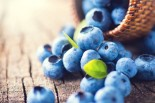 Blueberries: Tiny Balls of Nutrients