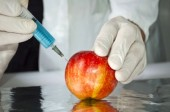 Frankenfood Takeover: Health Implications of GMO Exposure