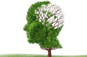 Simple Steps to Prevent Memory Loss & Cognitive Decline