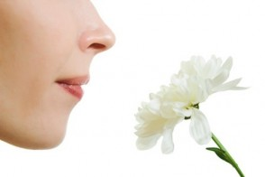 Ask Dr. Mike: Antioxidant Era & Is a Lack of Smell a Sign of Aging?