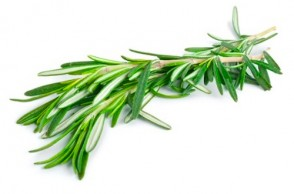 Rosemary Boosts Brain Power
