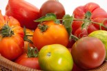 Tomatoes: Top Performance Food