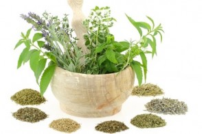 Common Herbs for Eye Problems