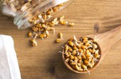 Health Food Trend: Sprouted Grains