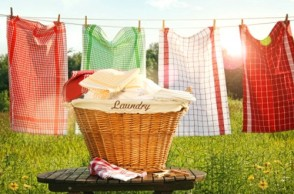 Dishing the Dirt on Clean: Toxic Laundry Secrets