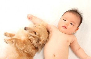 Dogs Can Help AND Hurt Your Baby