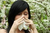 Allergy & Asthma Season: What You Should Know