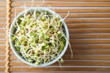 Using Mung Bean to Lower Inflammation