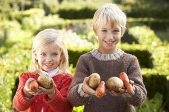 Pesticide Exposure & Your Child