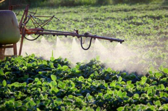 AAP Recommends Reducing Exposure To Pesticides