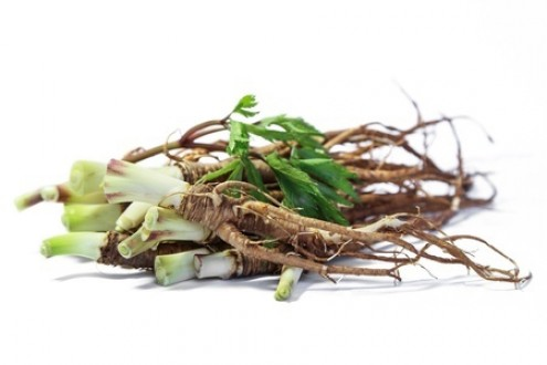 Benefits of Female Ginseng