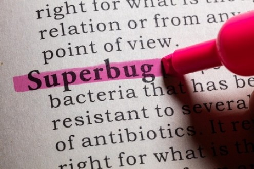 How to Survive a Superbug