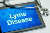 Lyme Disease: Is There Hope for Those Who Suffer?