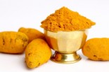 Curcumin & Inflamation: Overweight Cats Provide Insight