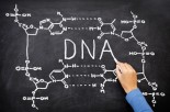 Our Genetic Blueprint: Conspiracy Theory?