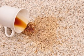 Ask Dr. Mike: Carpet in Your Home & Proper Dosing of Folic Acid