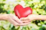 Heart Health: Prevention & Treatment