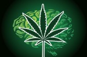 Ask Dr. Mike: Can Marijuana Cure Brain Cancer & Can Magnesium Improve Asthma?
